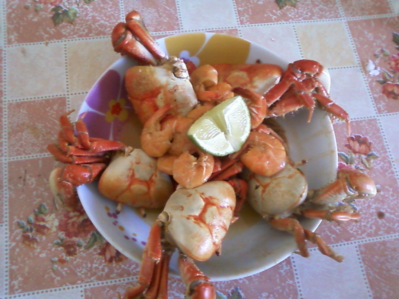 Caranguejo de coco com camarão
