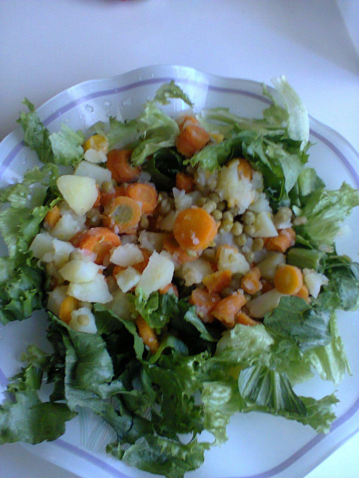 Salada ao molho de maionese