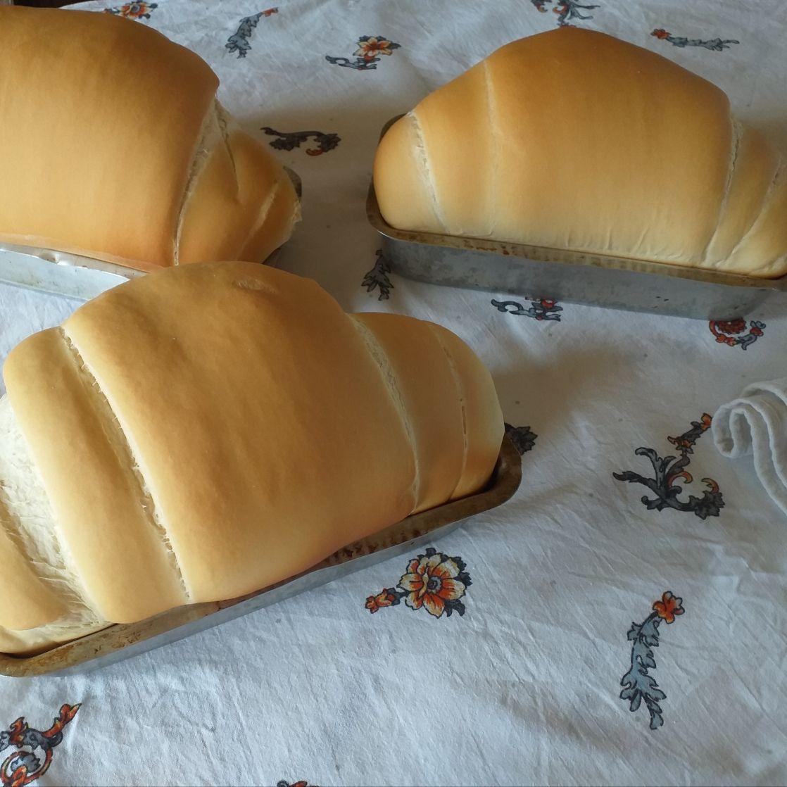 Pão caseiro da Néia